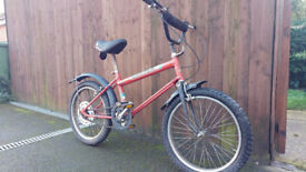 1981 Raleigh Grifter bike bicycle vintage bmx