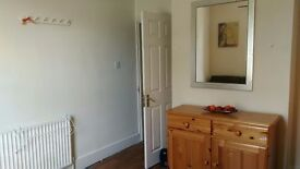 Single bedsit to let
