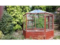 Hexagonal greenhouse-beautiful shape could be used as a summer house