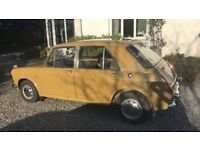 1971 Austin 1300 MK3. Colour, Harvest Gold with the Olive interior. 59000 miles.