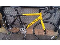 CARRERA TDF Limited Edition (shimano Claris model) used for 5 miles max! Fully Serviced By Bike Shop