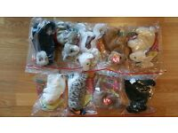 Beanie TY Baby Safe House Collection