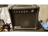 Hohner Panther 40 watt Guitar Amplifier