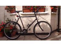 21 speed Bike large size