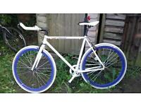 Fixie and single speed in very good condition