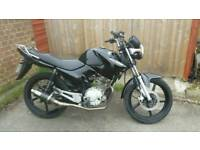 Yamaha ybr 125 2011 8 months mot