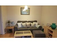 Spacious, newly refurbished 1 bed flat available from 1st September