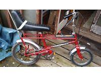 Raleigh tomahawk /chopper custom