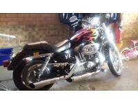 Harley Davidson 883 xcl c
