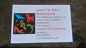 Dog Walker/Pet Sitter/for hire in Renfrewshire.