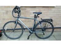 Ridgeback high quality bike