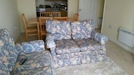 Two double seat sofa and rug
