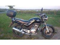 VERY CLEAN YAMAHA YBR 125cc 12 MONTHS MOT