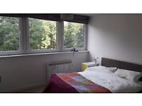 Double Spacious Room to Rent Crystal Palace