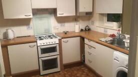 2 Rooms for rent 400£ pm
