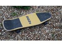 Shout Skateboard