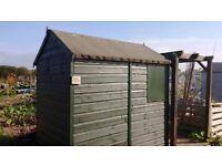 Shetland Apex Garden Shed
