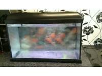 Aquarium 24 insh 2 foot. 60 litre