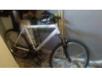 Large mens bike (please read discription)