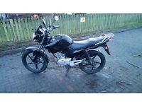 YAMAHA YBR125cc BLACK