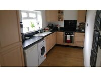 2 lovely double rooms for rent in Swansea