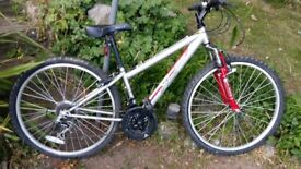 Boys apollo xc.26. Sixe 14 inch, mountain bike