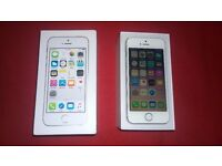APPLE iPhone 5s 16GB (UnLocked) - Still Under Apple Warranty