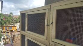 3 teir indoor hutch. Available now. Cancelled order can deliver for extra charge.