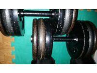 Pair of 30kg metal fixed dumbbells 60kg