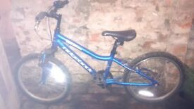 Ridgeback boys bike for sale (used)