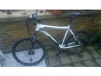 RP 450£ bicycle moutnain bike diamondblack