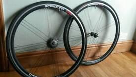 Campagnolo Scirocco wheel set.
