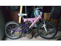 "Girls bike size 20"" wheels"