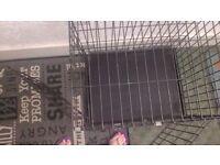 Double door dog cage