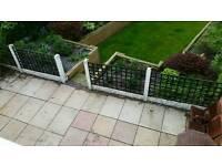 Four wooden trellis panels fencing