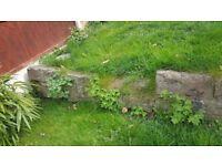 Free Garden Stone