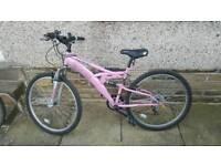 Ladies / Teen Girls Mountain Bike