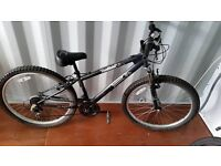 Adult montain bike - good condition / perfect working order