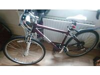 Mens hybrid bike 47 cm frame Pinnacle - good condition
