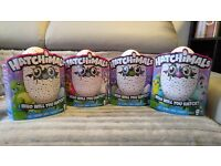 ❄❄ Hatchimals Draggles & Pengualas (Multiple Colours Available) ***BNIB*** ❄❄
