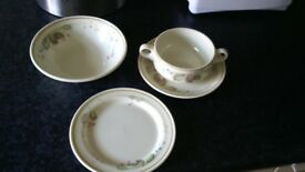 Royal daulton autumn bramble crockery
