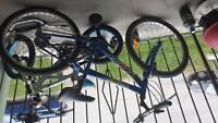 24 in mountain bike