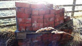 Ruabon Red Bricks