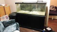 55 gallon tank stand and light