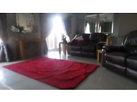 LARGE RED RUG - very good condition