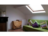Lovely light, bright and airy one bed flat near Sefton Park