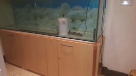 6ft very good condition fish tank with cabinet and full equipment and set up