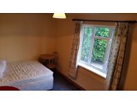 ROOM TO LET- SHARED ACCOMMODATION