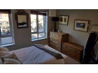 1 Bedroom Flat in Bramley Village. Newly updated, Living rm, Shower room, separate bedroom