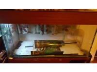 48x20x24 Fish Tank Stand and Fluval U4 Filter